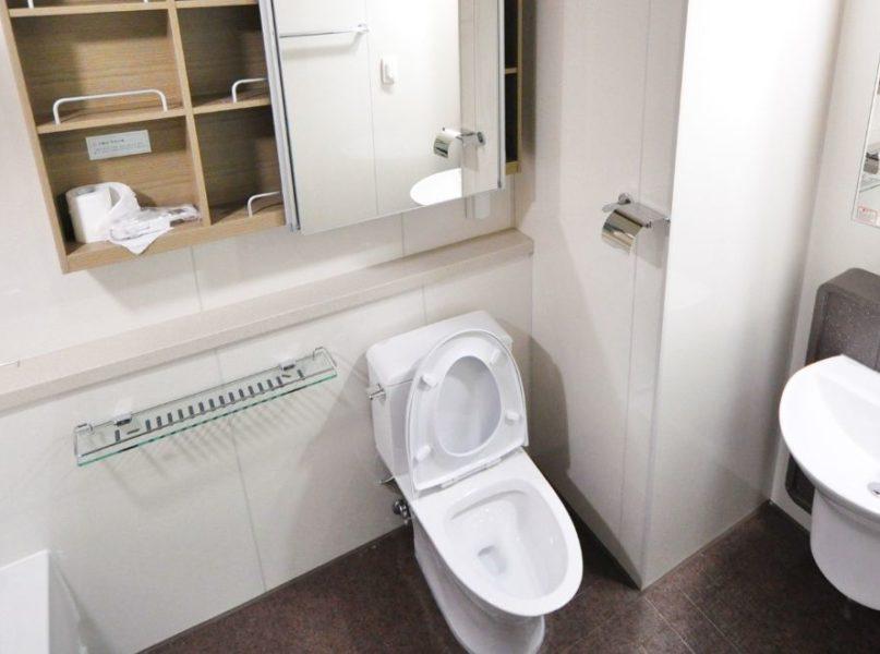 Remodeling a Bathroom in Downriver MI